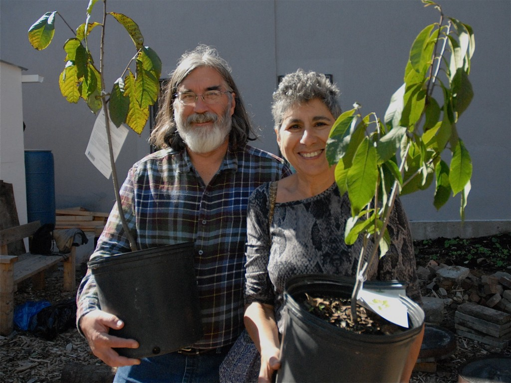 Couple takes home Pawpaw trees at New York Restoration Project tree give away!