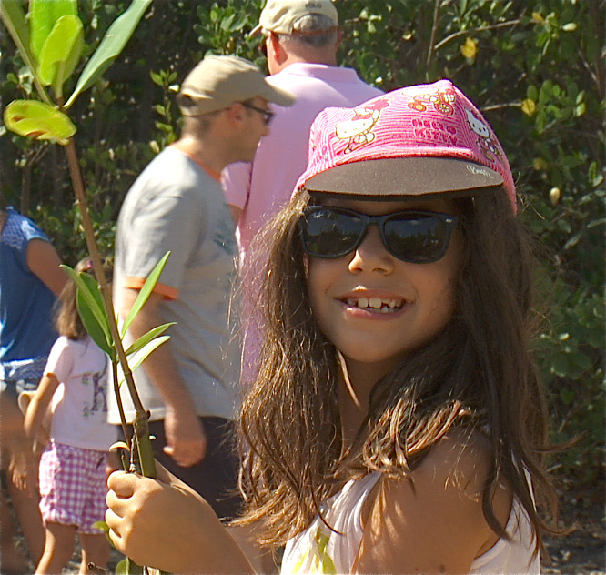 Young student happily joins in Mangrove planting. Mangroves are critical native trees in Florida coastal ecosystems.   image from Hometown Habitat