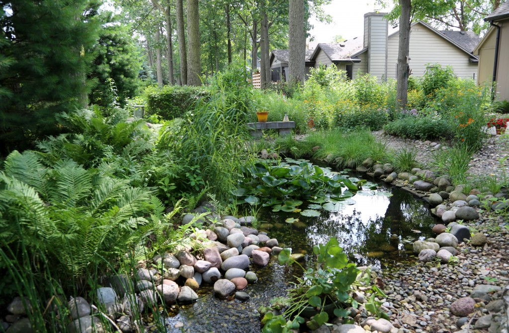 Wild Ones, Linda and Dallas Howard, have turned their backyard, planted with native plants, into an oasis for pollinators and aquatic life.